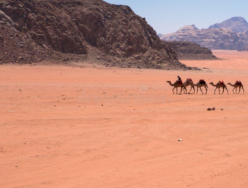 Wadi Rum, Jordan stock image