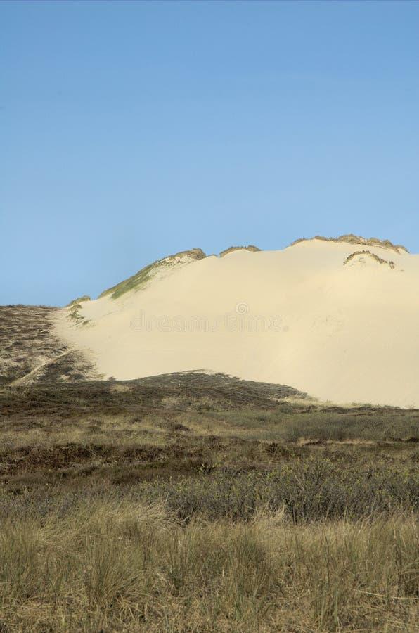 Dunescape Sylt 9 fotografía de archivo