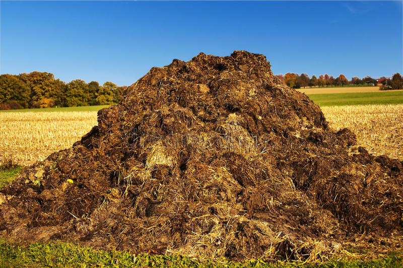 Download Dung heap stock image. Image of country, acre, dung, agriculture - 21907345