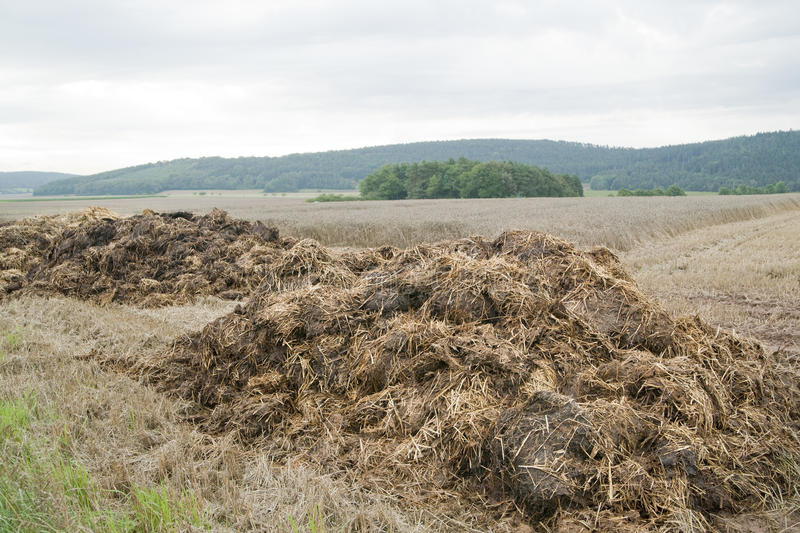 Download Dung Hill Royalty Free Stock Image - Image: 18835866