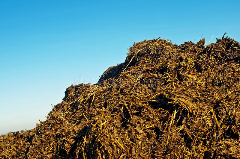 Dung hill. With a blue sky stock images