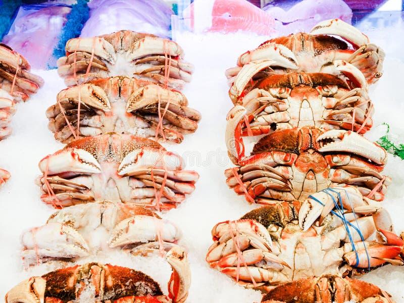 Dungeness krabbor på is arkivfoton