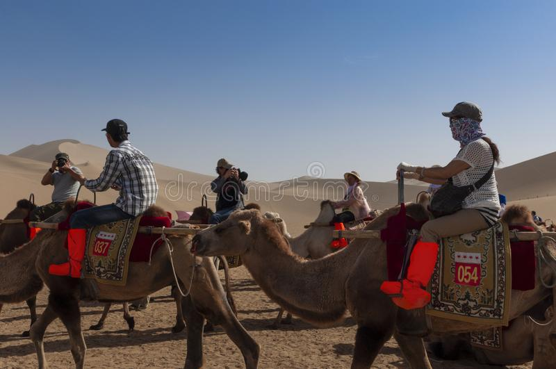 Group of Chinese tourists riding camels at the Echoing Sand Mountain near the city of Dunhuang, in the Gansu Province, China. stock photography