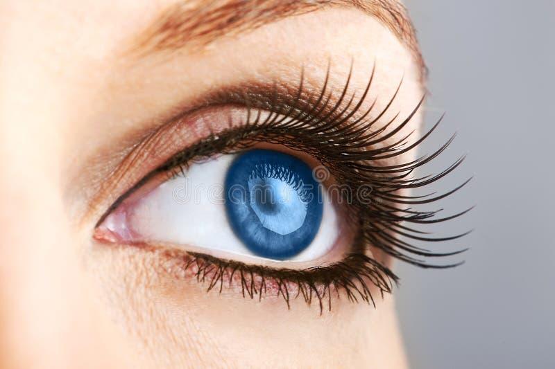 Weibliches blaues Auge mit falschen Peitschen lizenzfreie stockfotos