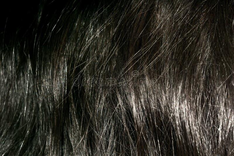 Dunkelbraune Haar-Beschaffenheit stockfotos