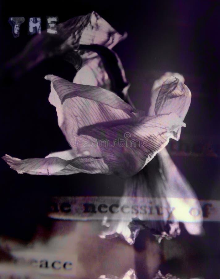 Dunkle Blume stockbild