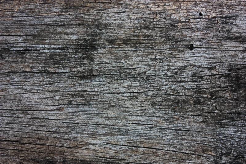 Dunkle hölzerne Beschaffenheit für Tapeten- und Hintergrundverwendung stockfoto