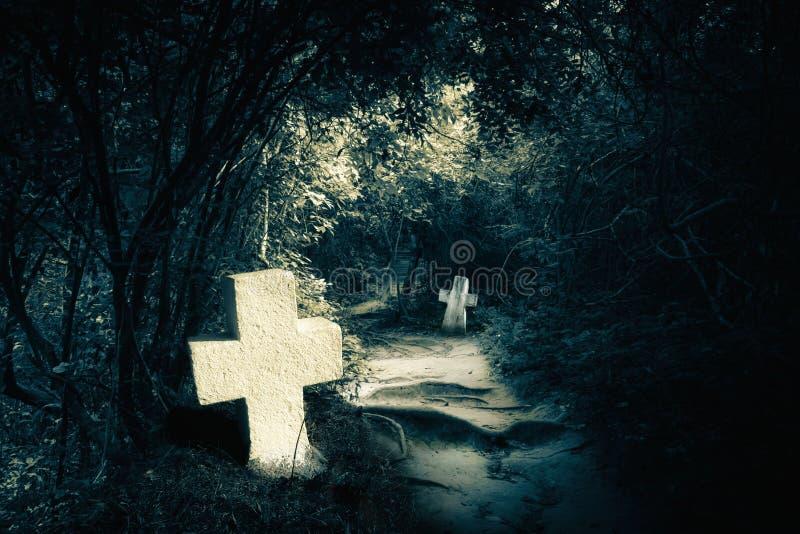 Dunkle Nacht im mysteriösen Wald mit verlassenen Gräbern stockbild