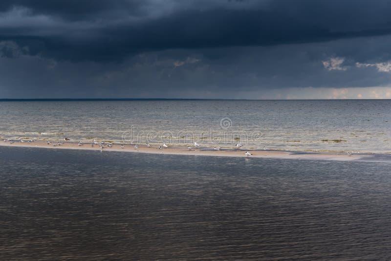 Dunkle Ostsee stockfotografie