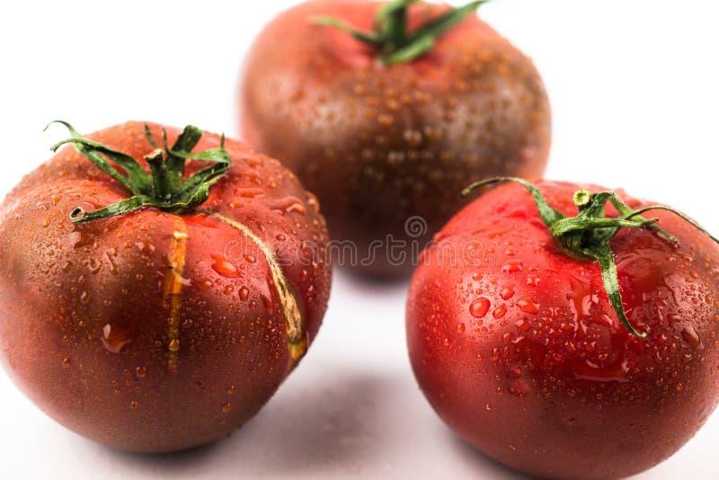Dunkle taunasse Tomate drei stockfotografie