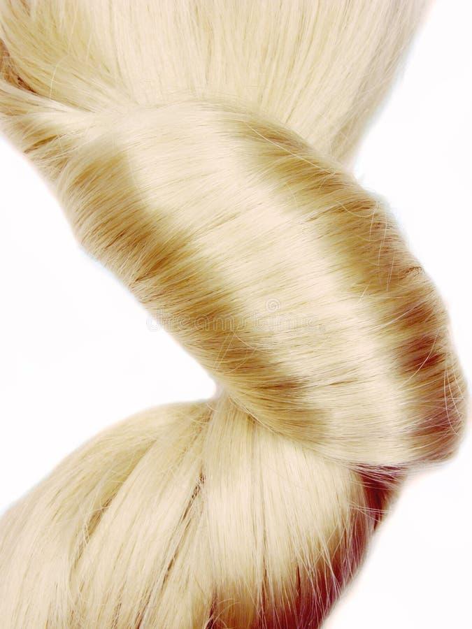 Dunkler blondes Haar Coiffure stockbilder