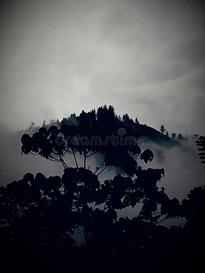 Dunkler Hügel stockfotos