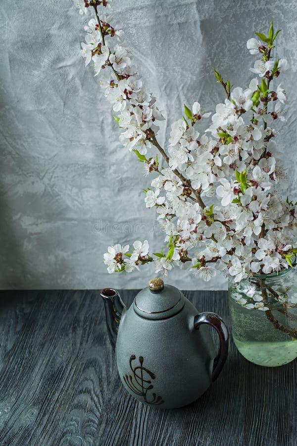 Dunkler Teesatz mit einer Niederlassung von blühenden Aprikosen Asiatische Art Dunkler Hintergrund Platz f?r Text stockfotografie
