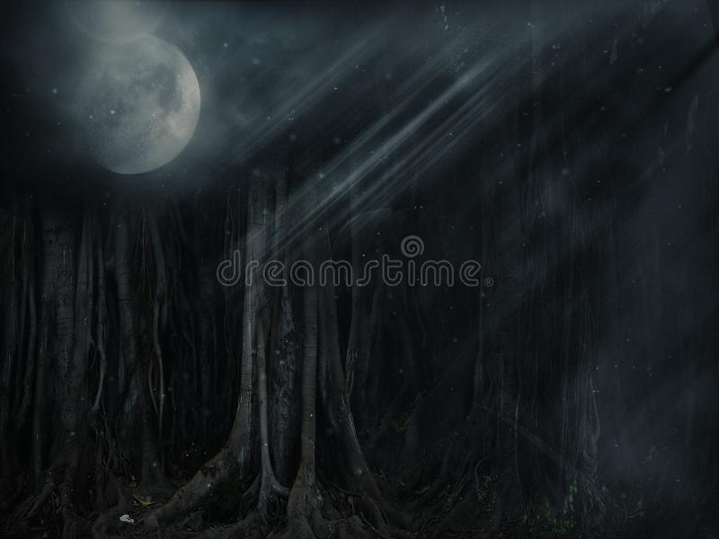 Dunkler Wald stockfoto