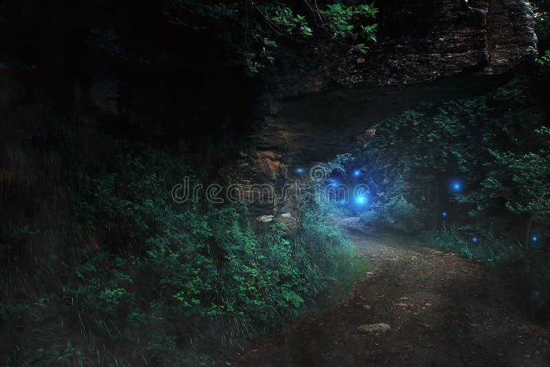 Dunkler Weg im Wald zum feenhaften Reich stockbild