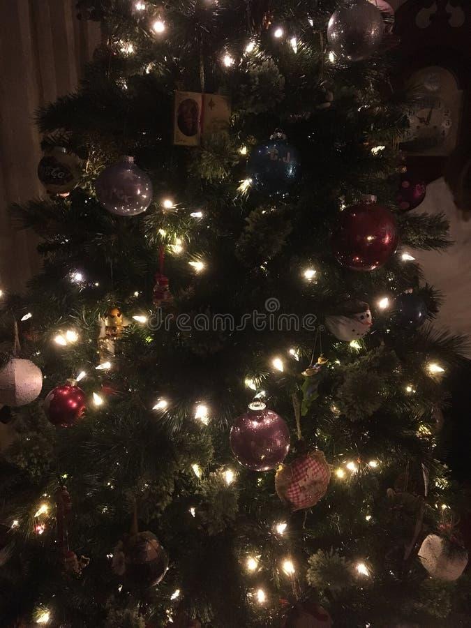 Dunkler Weihnachtsbaum lizenzfreies stockbild