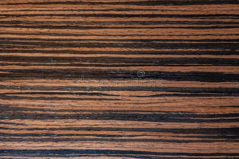 Dunkles Ebenholzfurnier-blatt, natürlicher hölzerner Hintergrund auf Makro Extrem Foto der hohen Auflösung lizenzfreies stockfoto