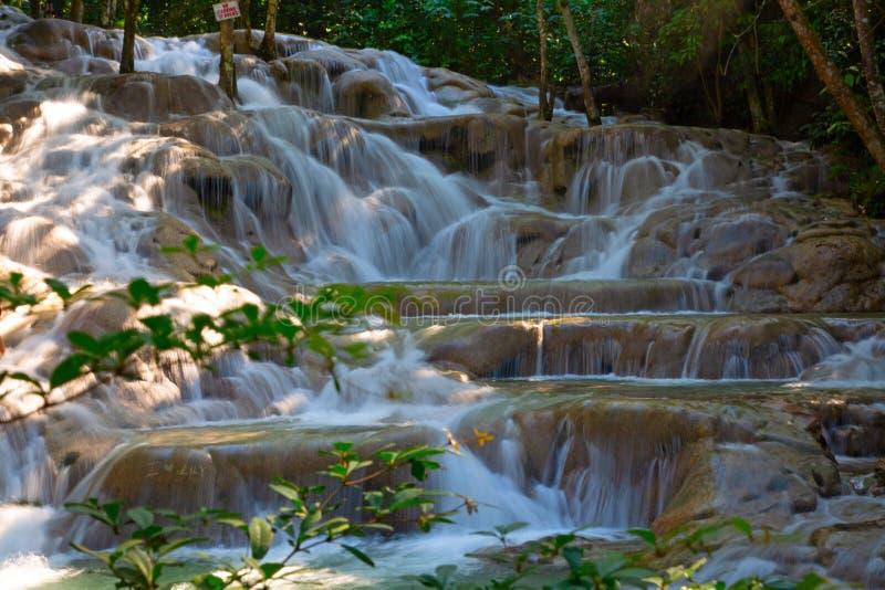 dunn faller flod s royaltyfri fotografi