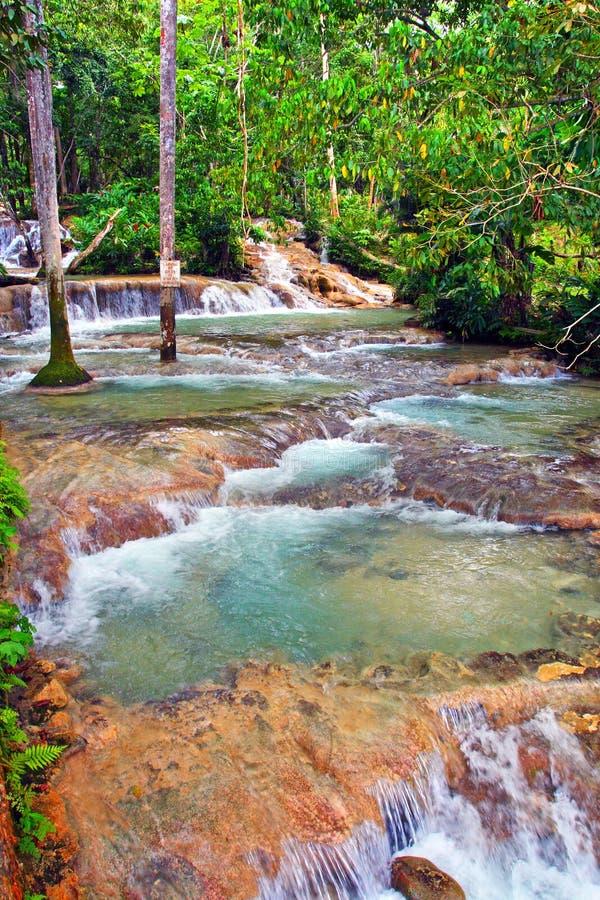 dunn faller flod s för jamaica ochorios arkivbild