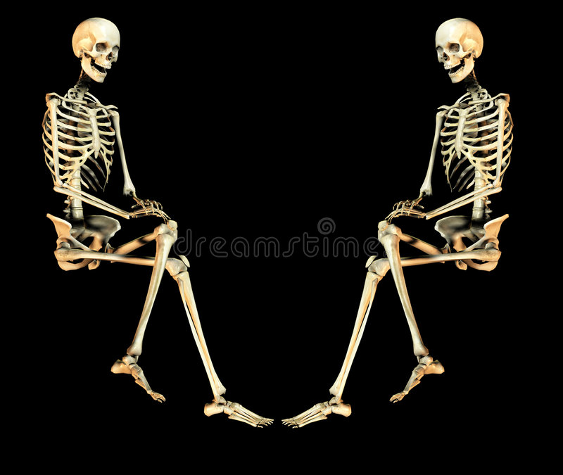 Duo 2 van de schedel vector illustratie