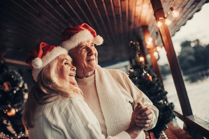 Duo dai capelli d'argento felice che celebra insieme natale fotografia stock