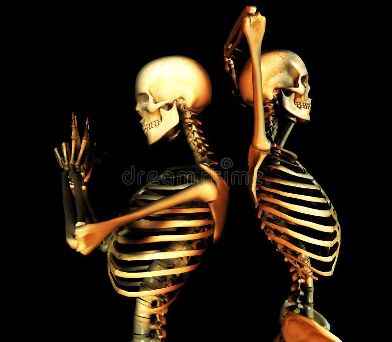 Duo do crânio ilustração stock