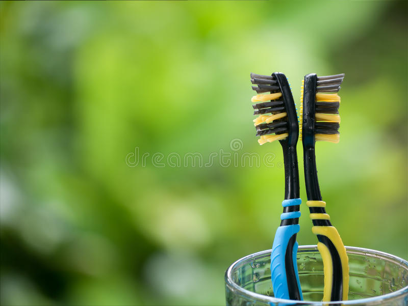 Duo Toothbrushes in glass. On blurred green background royalty free stock photos