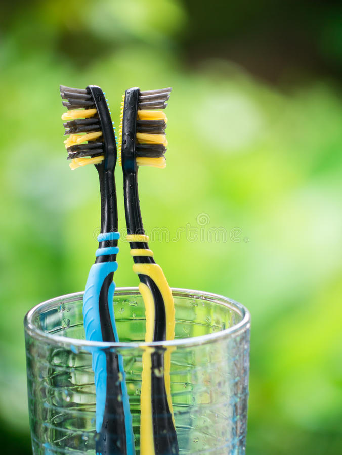 Duo Toothbrushes in glass. On blurred green background stock photography