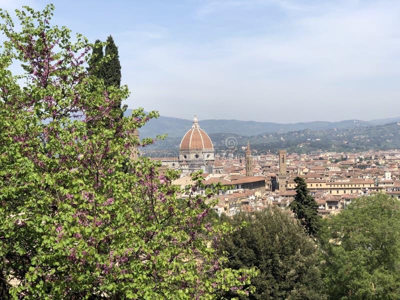 Duomo в Firenze стоковая фотография