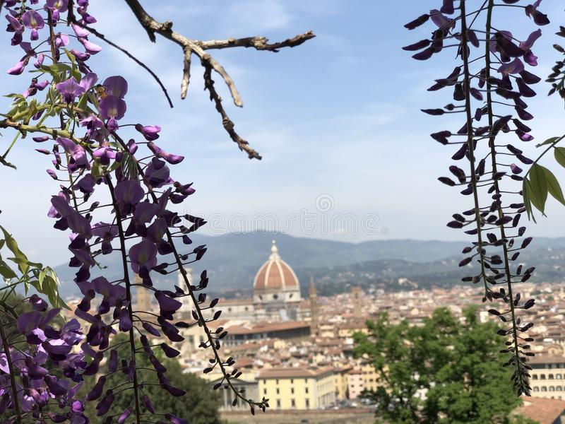 Duomo в Firenze стоковые изображения