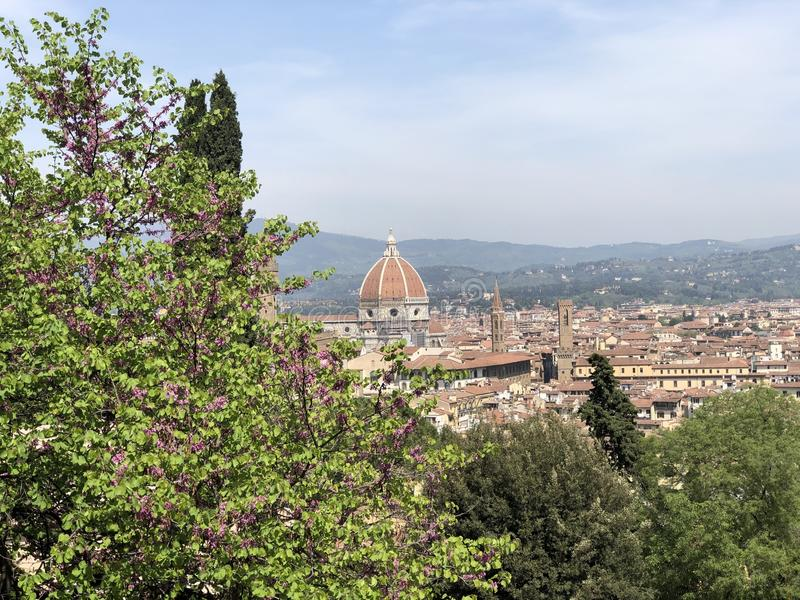 Duomo in Firenze stock photography