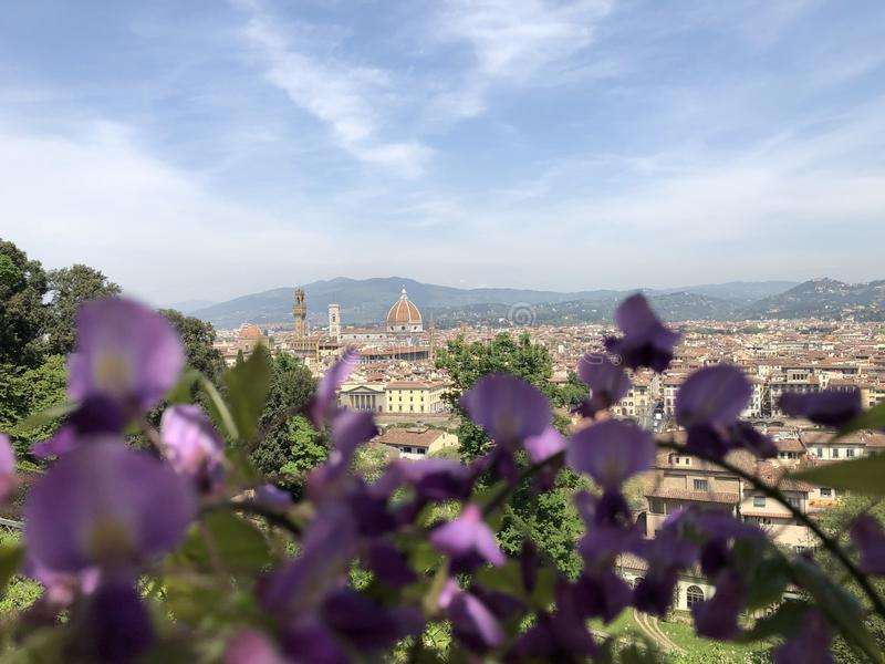 Duomo in Firenze royalty free stock image