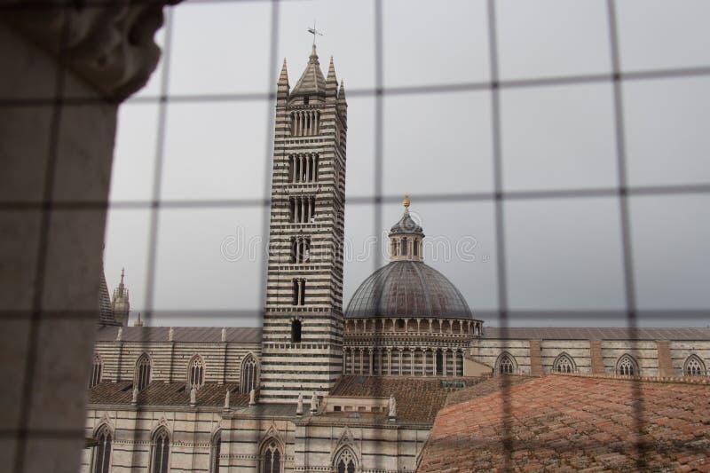 Duomodi Siena och klockatorn Sikt från järnrasterfönster italy tuscany royaltyfria bilder