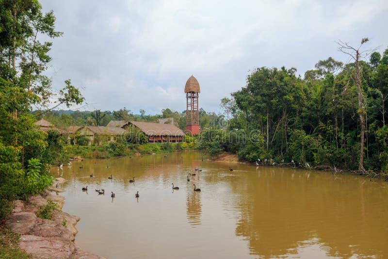 Duong Dong-Stadt, Phu Quoc, Vietnam - Dezember 2018: Turm nahe dem See mit schwarzen Schwänen im Safari-Park lizenzfreie stockbilder