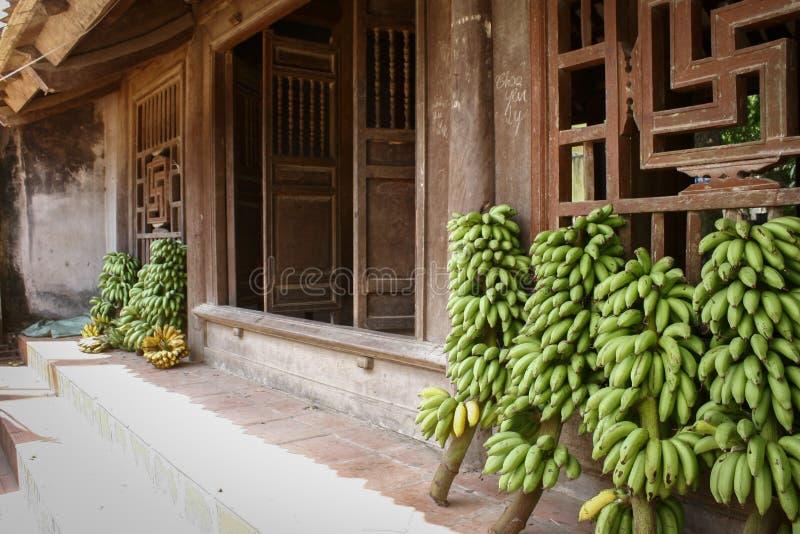 Duong Lam forntida by royaltyfria bilder