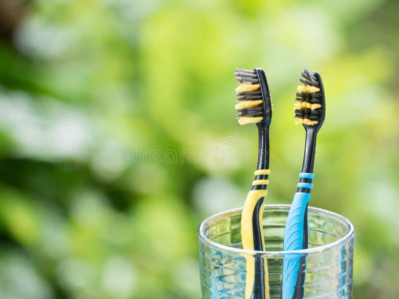 Duotandenborstels in glas stock afbeelding