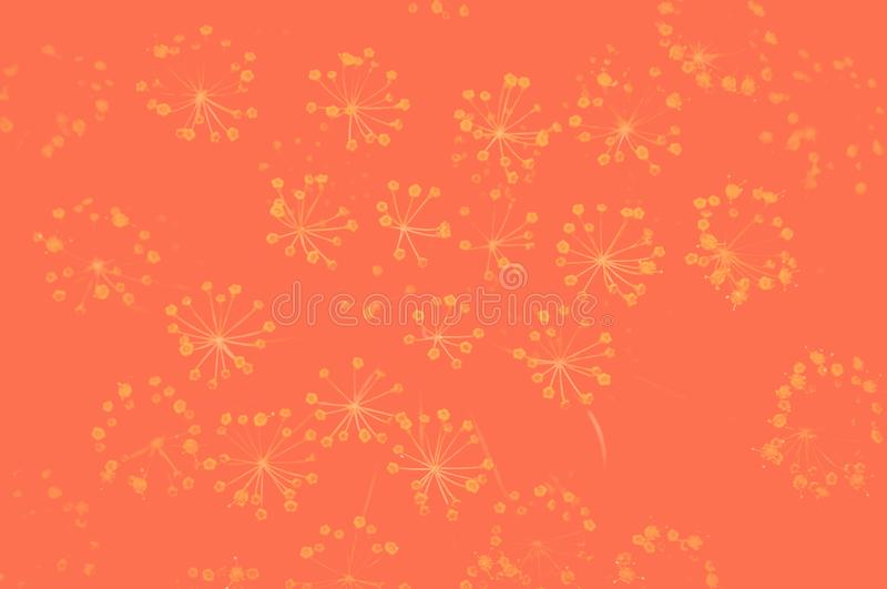 Duoton effect photo with dill flowers on blurred background. Concept.Top view royalty free stock photography