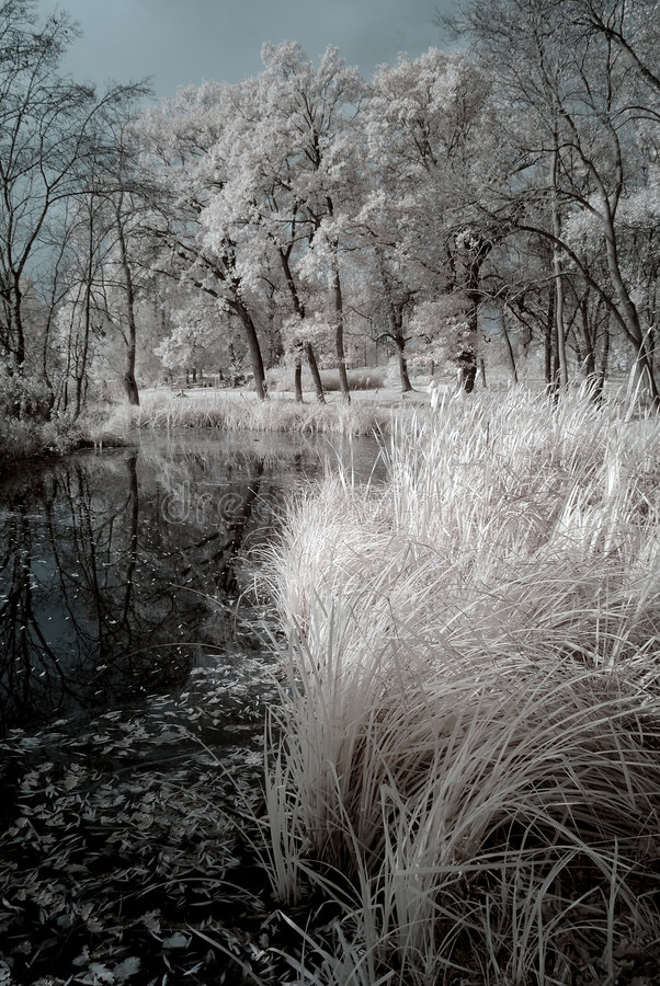 duotone红外线湖 库存图片