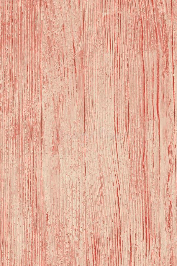 Duotone de corail bleu et de whie de vieux fond en bois de grunge image libre de droits
