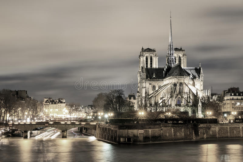 Duotone Notre-Dame royaltyfria bilder