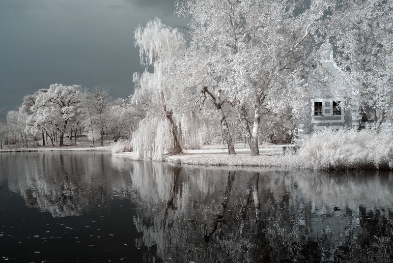 duotoneinfraredlake arkivfoton