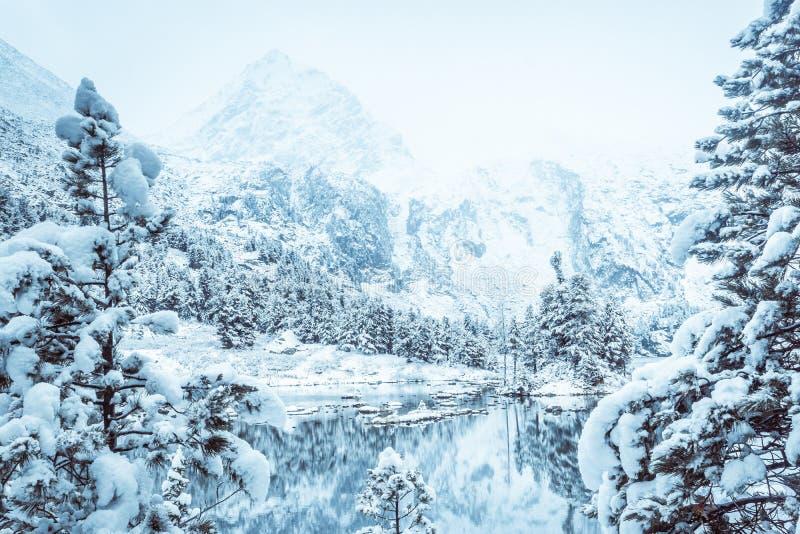 Duplique la superficie del lago del invierno con una cordillera fotografía de archivo libre de regalías