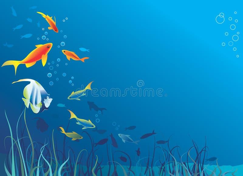 Durée sous-marine. Poissons, algue illustration stock