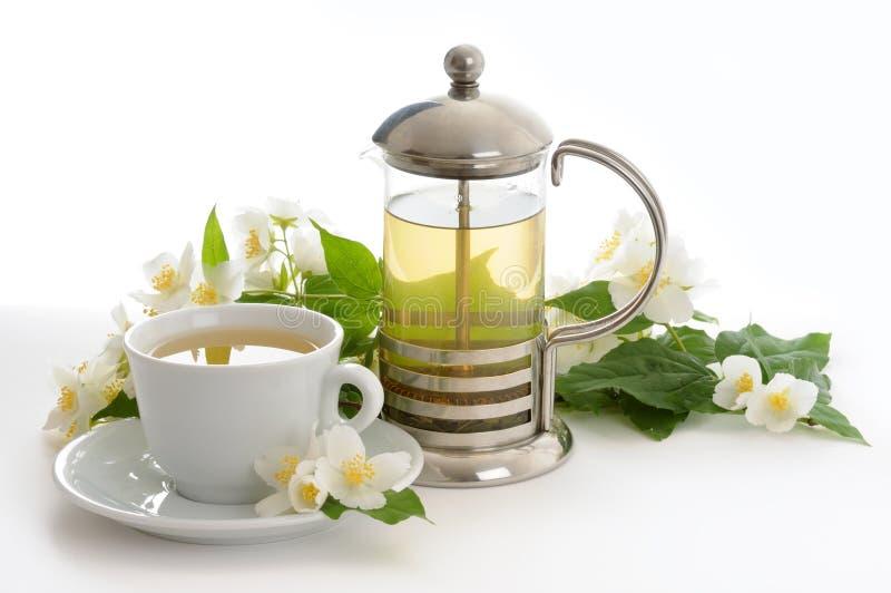 Durée toujours avec du thé de jasmin photo libre de droits
