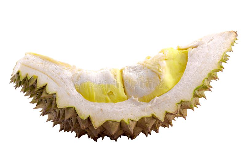 Durain fruit on white background with clipping path. Durian bark stock photography
