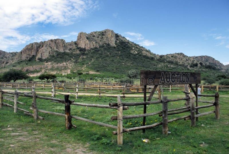 Durango photos libres de droits