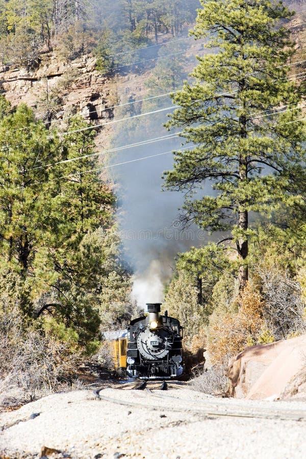 Durango Silverton Narrow Gauge Railroad, Colorado, de V.S. royalty-vrije stock afbeelding