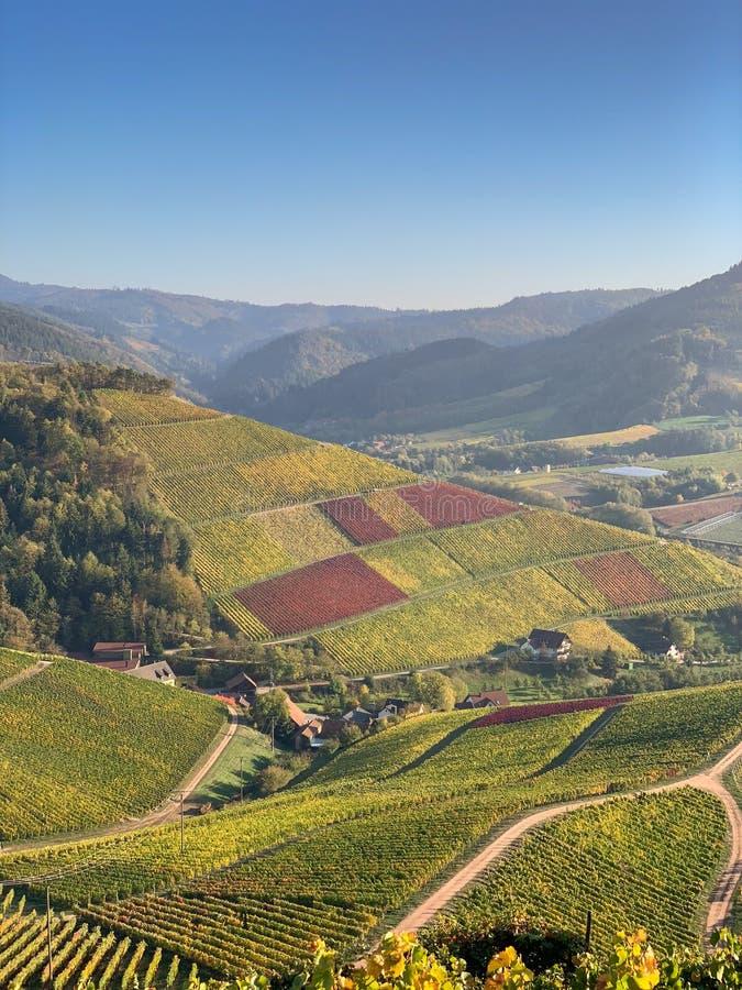 Durbach, взгляд трутня Германии воздушный в осени стоковое изображение