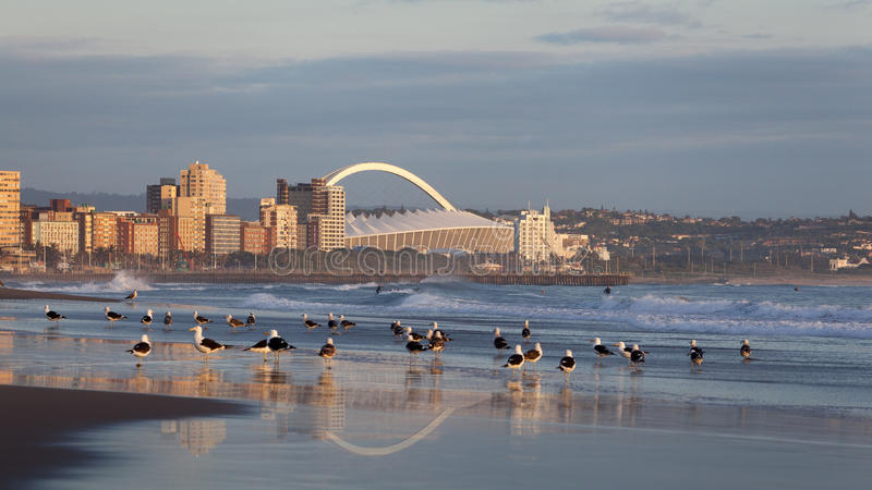 Durban Sudafrica immagini stock libere da diritti