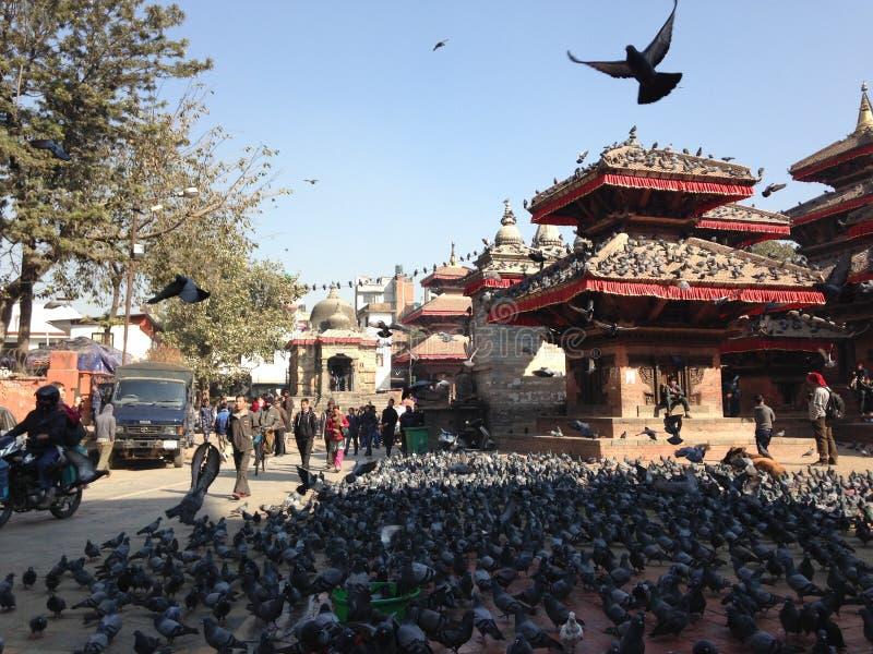 durbar квадрат kathmandu стоковые изображения rf